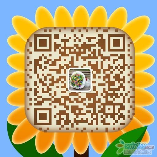 816946545842687294.jpg